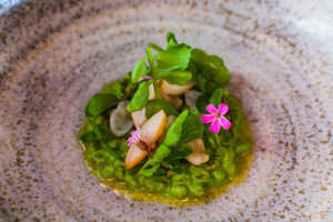 Organic grains with geoduck and upland cress