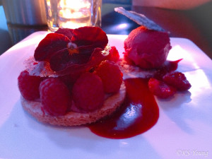 Raspberry Tart - the night's featured dessert