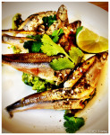 Bar Sajor - Smelt with Avocado