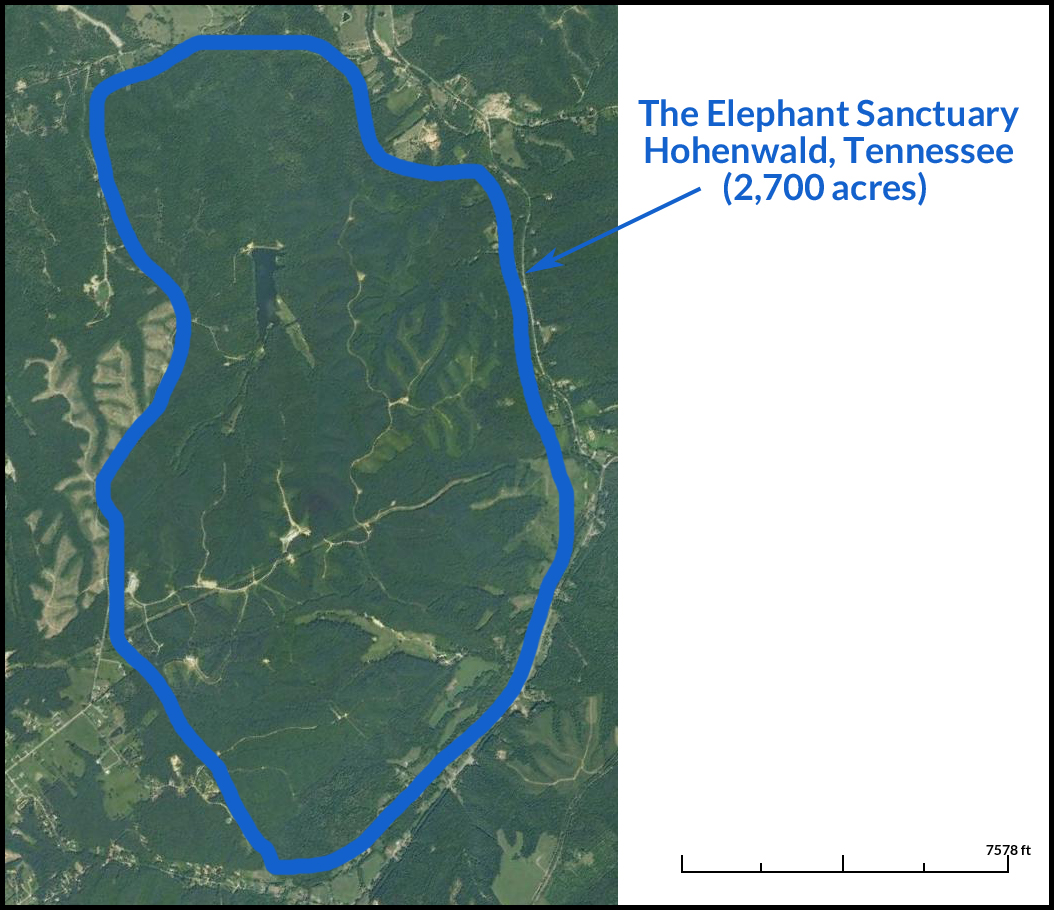 The Elephant Sanctuary in Hohenwald, Tennessee (2,700 acres)