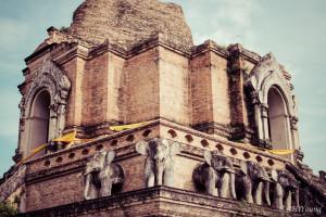 Stone elephants guarding Wat Chedi Luang's stupa